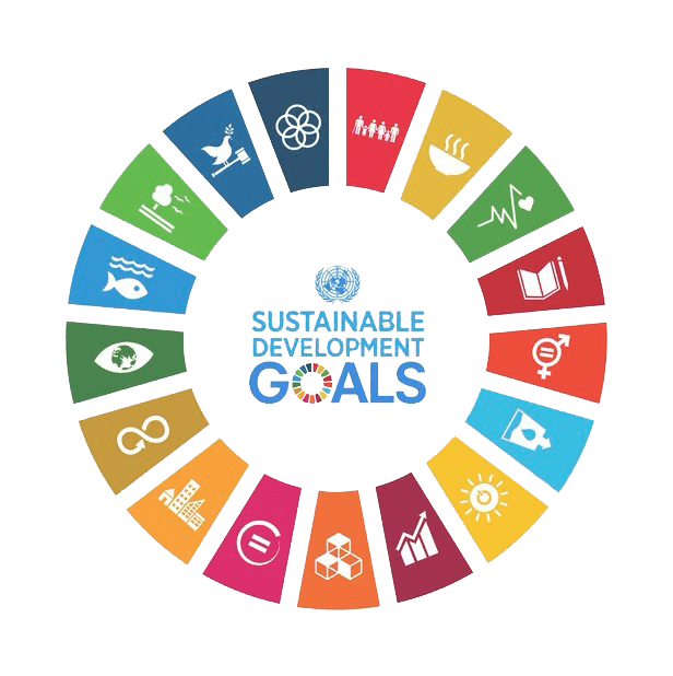 Logo Sustainable Development Goals